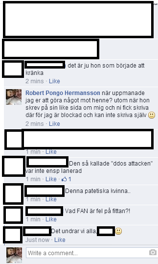 Robert Hermansson om DDoS
