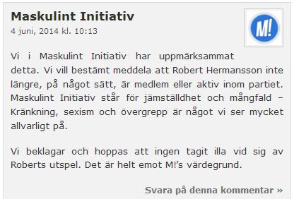 maskulint-initiativ1